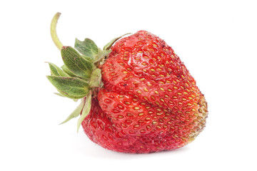 fresh single strawberry with green peduncle isolated on white