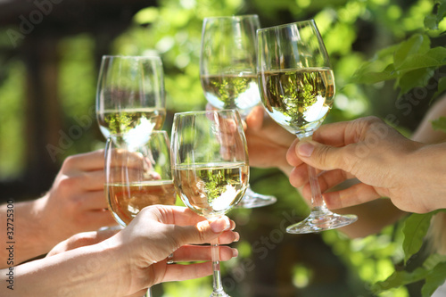 Leinwanddruck Bild People holding glasses of white wine making a toast