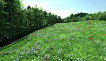 Flowering Meadow and Stream