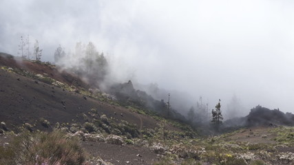 Floating fog in Tenerife mountans