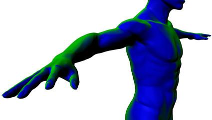 Uomo torso nudo