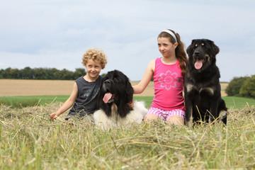 deux enfants et leurs chiens