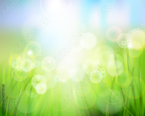 Nature background. Vector illustration.