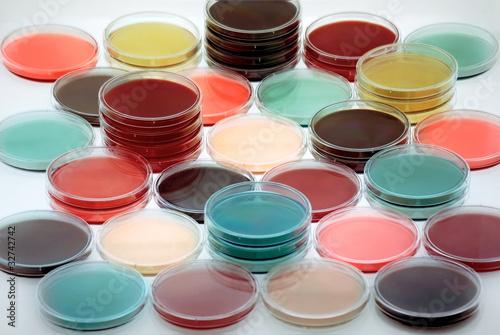Placas petri con medios de cultivo