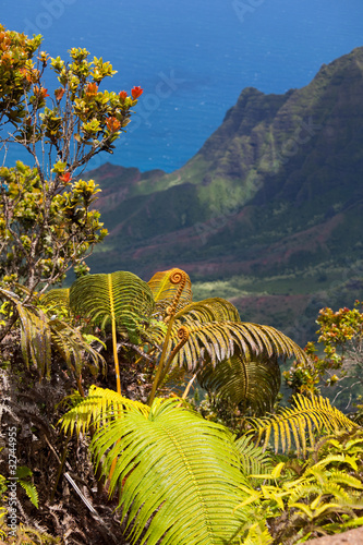 Tropical coast on Kauai,Hawaii