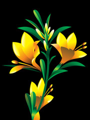 yellow oleander flower plant