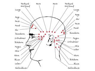Akupunktur Therapie - Traditionelle Chinesische Medizin