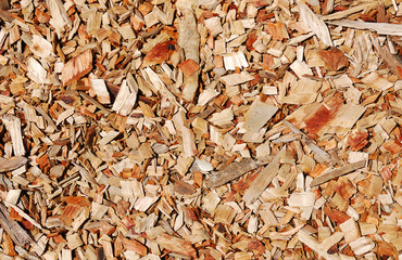 Wooden chips layer