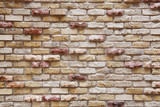 Fototapety レンガの壁面