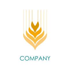Logo wheat # Vector
