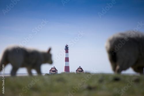 Leinwanddruck Bild Schafe auf dem Deich vor dem Leuchtturm in Westerhever