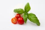 Fresh italian salad ingredients