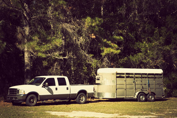 Pick up with horse trailer