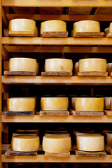 World famous Croatian Pag cheeses on the shelves of dairy