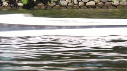 Skull rowing boat passing