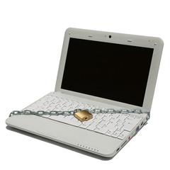 Netbook mit Schloss und Kette