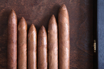 cigars on a dark background closeup