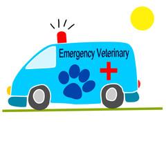 ambulanza per animali