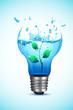 Plant in Light Bulb