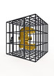 Caged pound