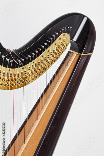 Schulter einer Harfe