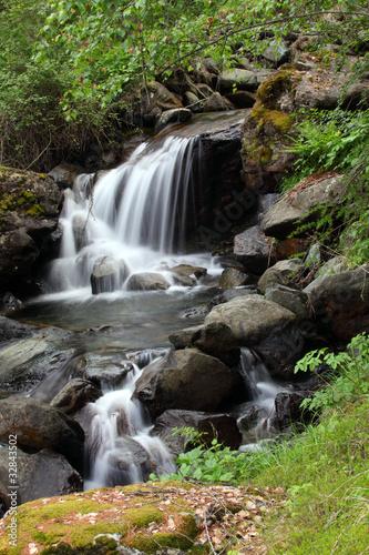 potok z wodospadami i roślinnością