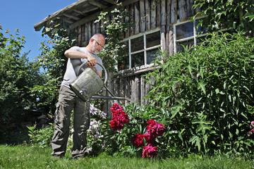 Mann Beim Giessen der Blumen