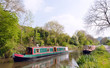 Green narrowboat