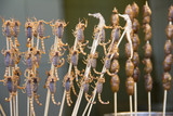 Scorpions and seahorses on sticks, Beijing, China poster