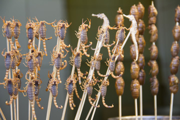 Scorpions and seahorses on sticks, Beijing, China