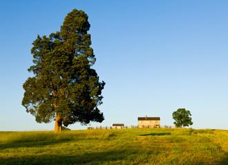 Benjamin Chinn House at Manassas Battlefield