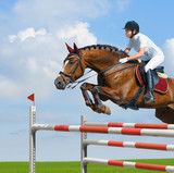 Equestrian jumper - horsewoman and bay mare poster
