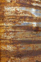 Stripe rust background