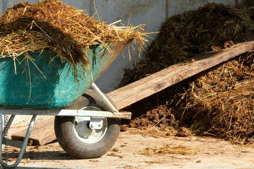 Leinwandbild Motiv Am Bauernhof