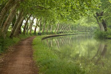 Piste cyclable sur le Canal du Midi (Toulouse)