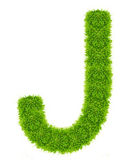 green grass letter J Isolated