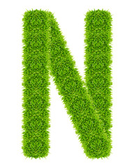 green grass letter N Isolated