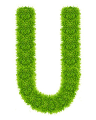 green grass letter U Isolated