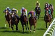 Horse Racing 5 - 32899769