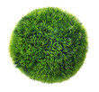 Green grass sphere Isolated on White