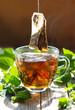 kräutertee - melisse - antistresstee