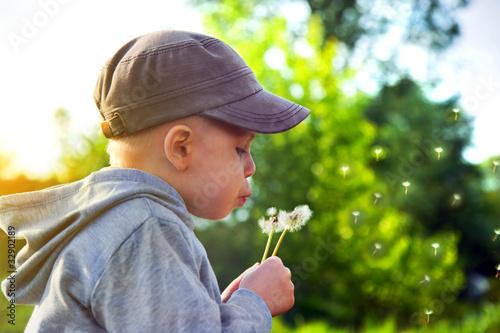 Kid blowing dandelion. Happy spring time