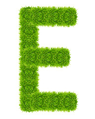 green grass letter E Isolated