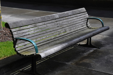 Ashwood Urban Bench with Sidewalk Grass and Tree