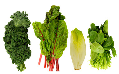 fresh kale,swiss chard, belgian endive and spinach