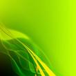 Un carré vert