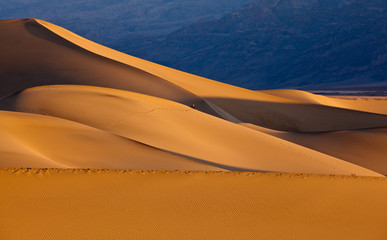 Mesquite Flat Sand Dunes at sunrise, Death Valley