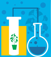 Closeup of beaker; test tube and potted plant