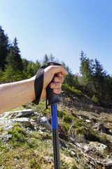 Hand mit Nordic Walking Stock