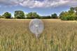 Ventilation dans un champ